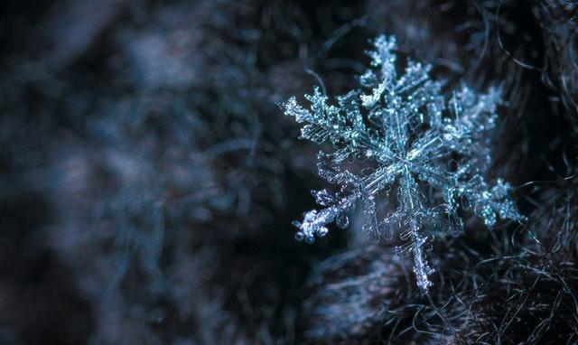 sněhová vločka, detail